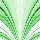 grön silk Royaltyfria Foton