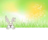 grön sitting för kaningräs Vektor Illustrationer