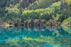Grön sjö i berg som en spegel Fotografering för Bildbyråer