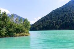 Grön sjö och skog i auronzo di cadore royaltyfri fotografi