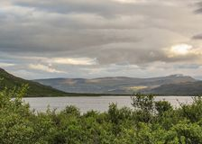 Grön skog bredvid den breda sjön och berg på bakgrunden Westfjords av Island, Europa royaltyfri foto