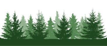 Grön skog, kontur för granträd bakgrund isolerad white stock illustrationer