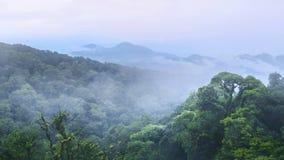 Grön skog och härligt berg på inthanon Chiangmai Thaila Royaltyfria Bilder