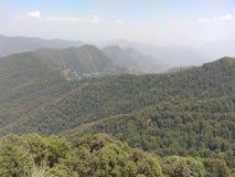 Grön skog och kullar med den gröna naturen med den lilla byn i bergområde arkivbild