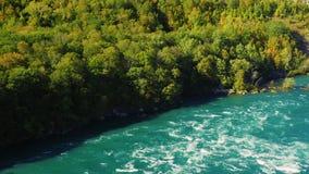 Grön skog på den kanadensiska kusten och Niagaraet River Gränsen mellan USA och Kanada stock video