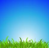 grön sky för blågräs vektor illustrationer