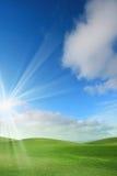 grön sky för fält Arkivbild