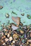 grön slime royaltyfri bild