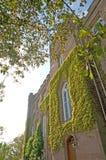 grön slott Fotografering för Bildbyråer
