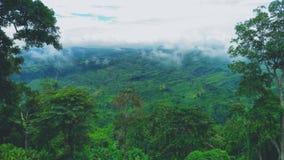 Grön slott med tunga moln Arkivbilder