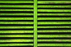 grön slutare Royaltyfria Foton