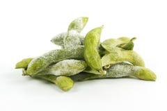 Grön sojaböna för frysning arkivbilder