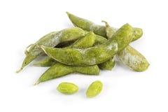 Grön sojaböna för frysning Royaltyfri Bild