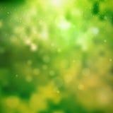 Grön solig bra lynnevårbakgrund abstrakt bakgrund Royaltyfria Foton