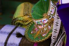 Grön sombrero Royaltyfri Fotografi