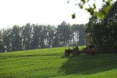 grön sommar för fält Royaltyfria Foton