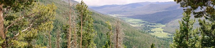 Grön sommarbergdal, Rocky Mountain National Park Colorado Förenta staterna royaltyfri bild