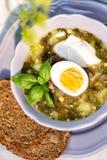 Grön soppa med syra och ägget varm mat royaltyfri fotografi
