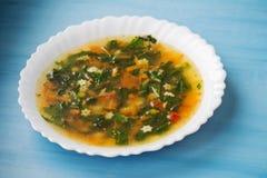 Grön soppa med syra och nässlan i en vit platta Rysk traditionell nässlasoppa arkivbilder