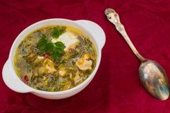 Grön soppa med syra, persilja och gräddfil tygred för bakgrund 3d framför Top beskådar Royaltyfri Foto