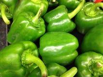 Grön spansk peppar Royaltyfri Fotografi