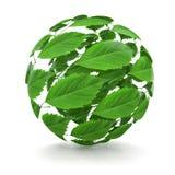 grön spherefjäder för leaf 3d Arkivbild