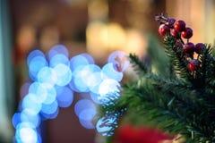 grön spruce för bollfilialjul Royaltyfria Bilder