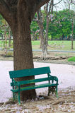 Grön stol i trädgården Arkivbilder