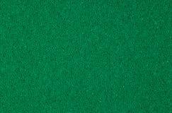 Grön svampig makrobakgrund Royaltyfri Bild