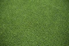 Grön syntetisk gräsmatta i trädgård Fotografering för Bildbyråer