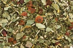 grön tea för bakgrund Royaltyfria Foton