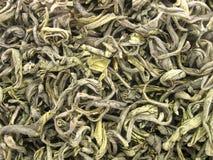 grön tea för closeup Arkivbild