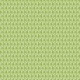 Grön tebladmodell Royaltyfri Fotografi