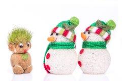 Grön Teddy And snögubbe Royaltyfria Foton