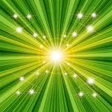 grön textur Arkivfoto