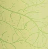 grön textur stock illustrationer