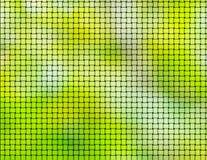 grön textur för bakgrund Royaltyfri Bild