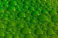 grön textur för bubblor Royaltyfria Bilder