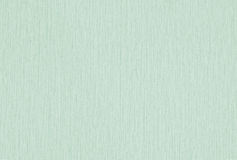 grön textur för tyg royaltyfri foto
