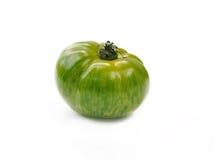 grön tomatsebra Royaltyfria Foton