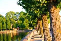 grön town royaltyfri foto