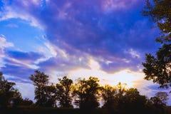 Grön trädöverkantlinje över himmel royaltyfria bilder