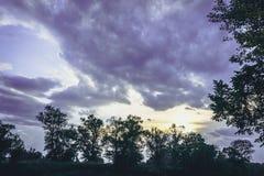 Grön trädöverkantlinje över himmel arkivbilder