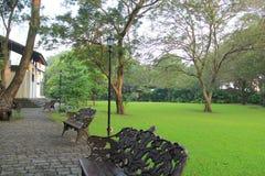 Grön trädgård av ett hus Arkivbilder