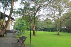 Grön trädgård av ett hus Royaltyfria Foton