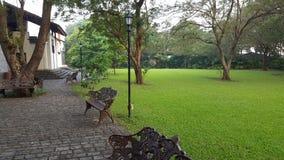 Grön trädgård av ett hus Arkivfoton
