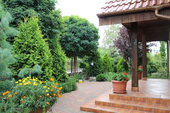 Grön trädgård i sommaren, Polen Royaltyfri Foto