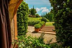 Grön trädgård som ser till och med fönstret royaltyfri fotografi