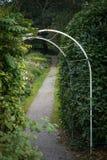 Grön trädgårds- bana Arkivfoto