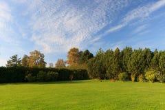 Grön trädgårds- lawn Arkivbild